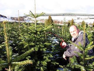 Weihnachtsbaum Selber Schlagen Sauerland.Weihnachtsbaum Selbst Schlagen Bauernhof Ferienwohnungen In