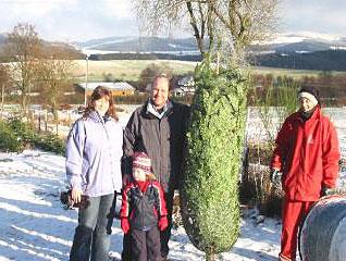 Weihnachtsbaum Selber Schlagen Sauerland.Weihnachtsbaum Selbst Schlagen In Schmallenberg Sauerland
